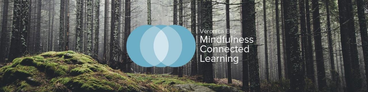 VEMCL-LinkedIn-HEADER--2